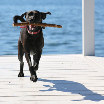 Bing on pier with stick!!
